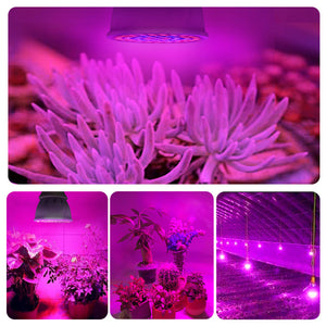 LED Plant Grow Light Bulb
