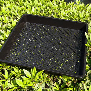Seed Germination Starter Tray