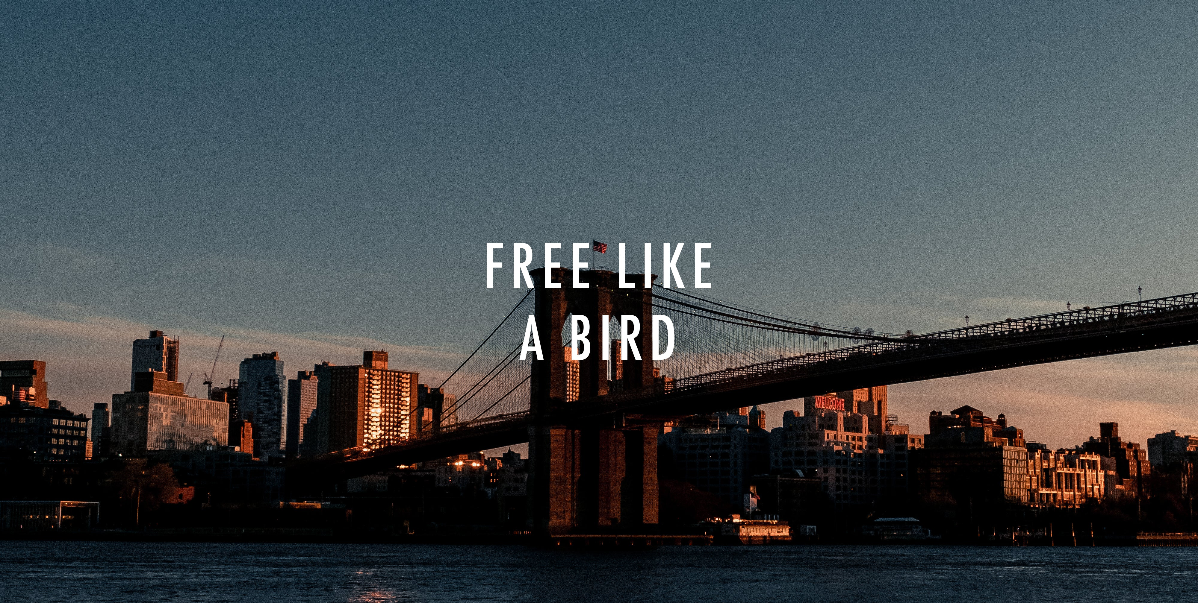 Free Like A Bird - A Colourful Autumn 20 Narrative
