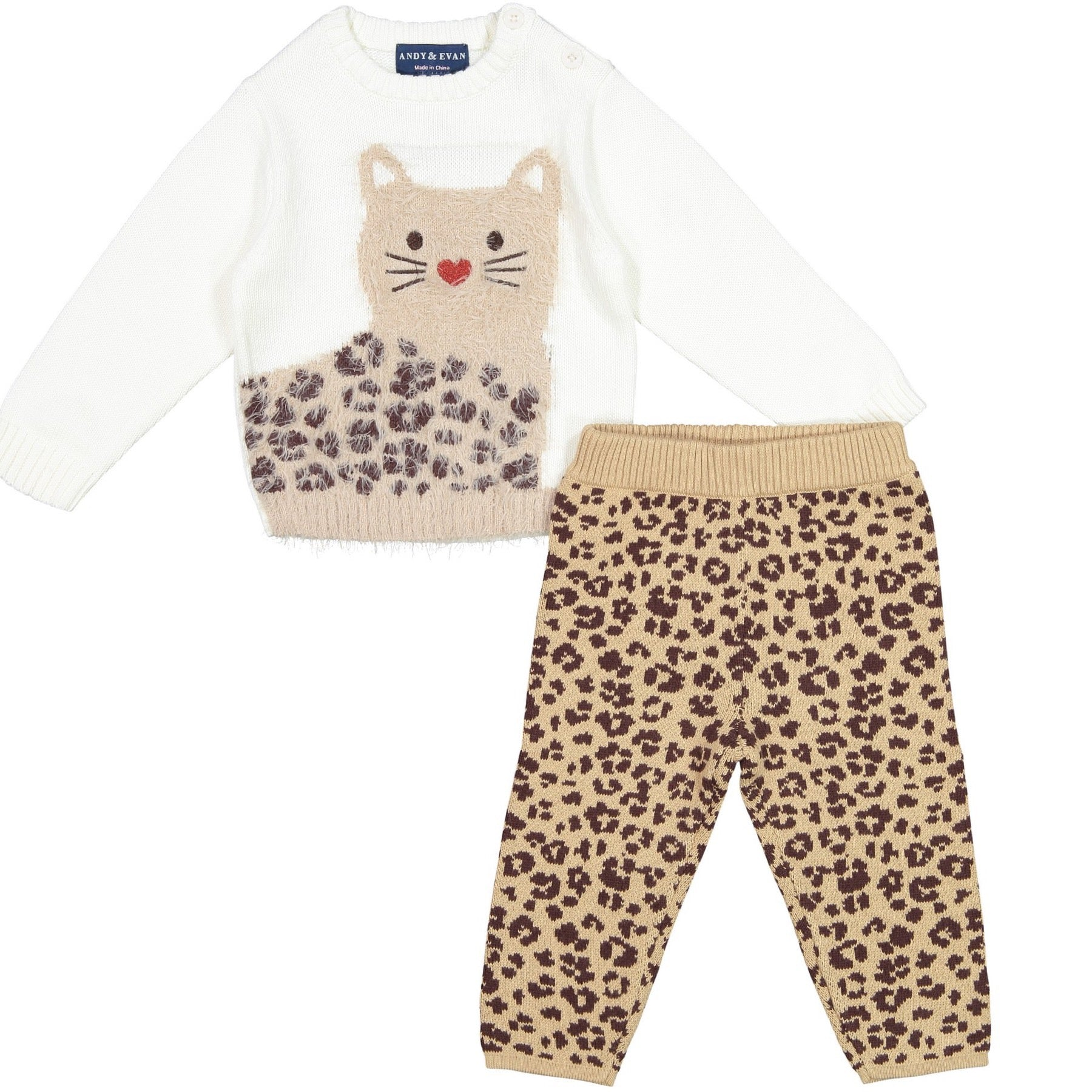 Cheetah Baby Chic Set