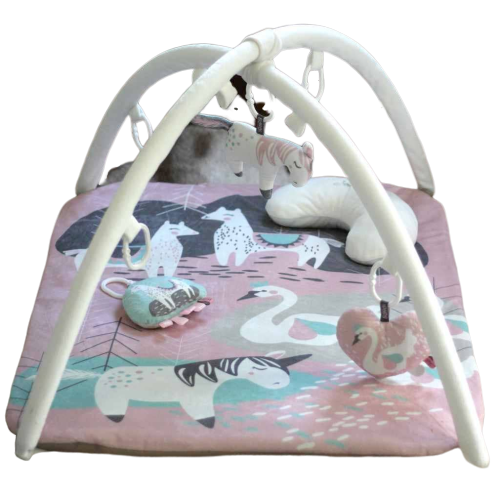 Sweet Romance Playgym Set