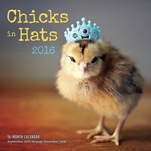Chicks in Hats 2016: 16-Month Calendar September 2015 through December 2016