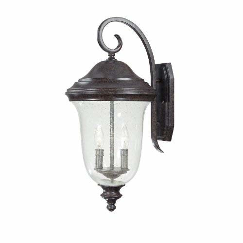 Capital Lighting 9513NT Outdoor Wall Lantern with Seeded Glass Shades, New Tortoise Finish