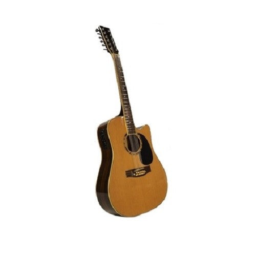 12-String ACOUSTIC-ELECTRIC GUITAR Pro-Quality Spruce Willow Rosewood Brand New