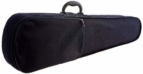 D'Luca Featherweight Violin Case