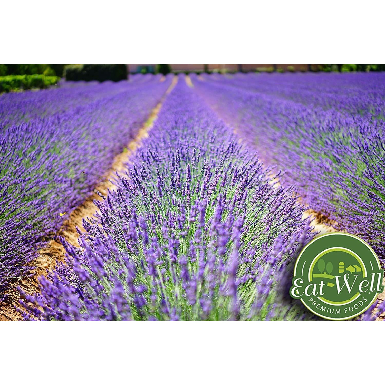 Lavender Flowers | 4 oz Reseable Bag