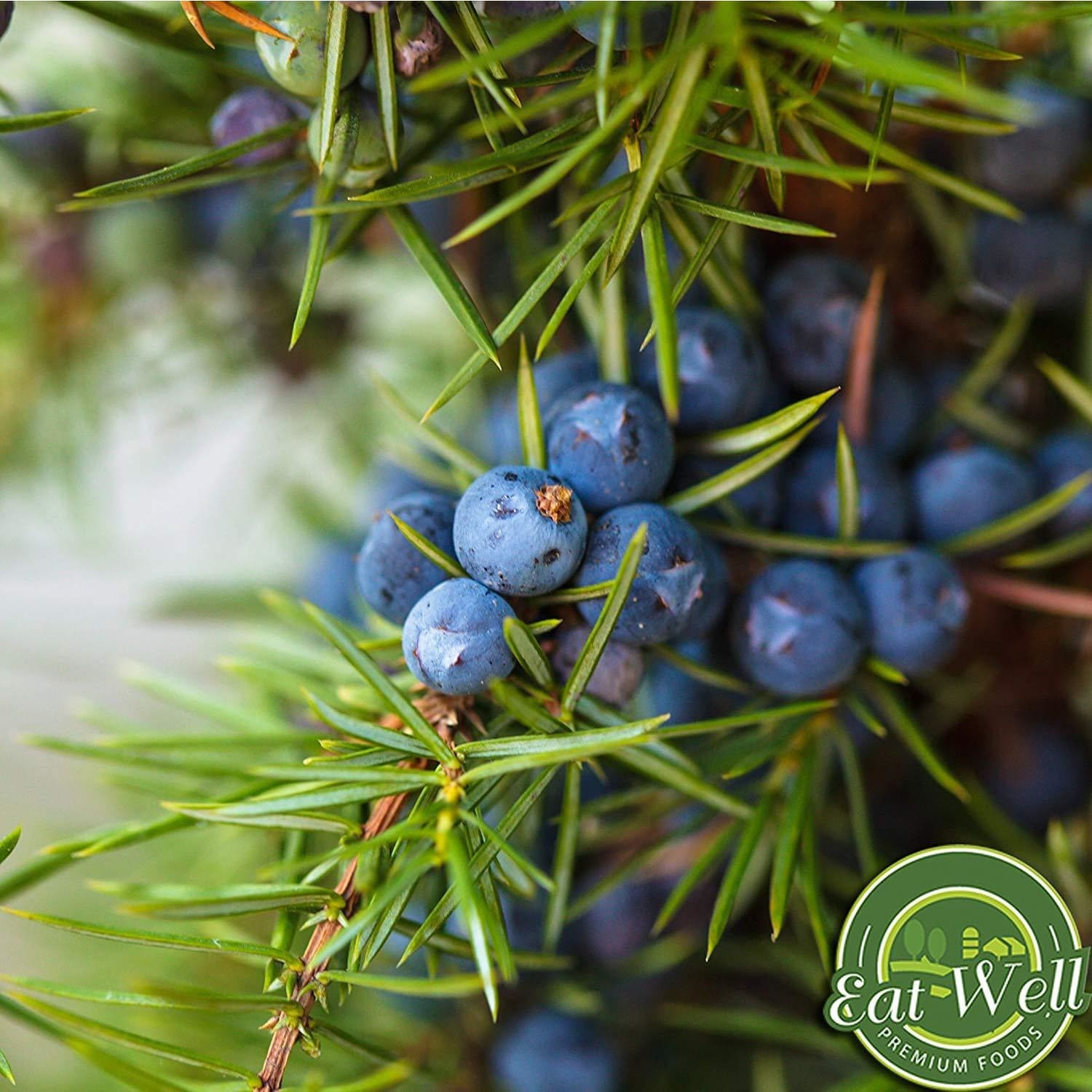 Juniper Berries | 4 oz