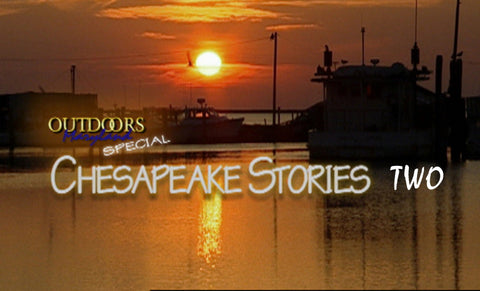 Chesapeake Stories II (2011)