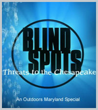 Blind Spots: Threats to the Chesapeake, DVD