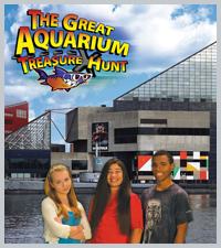 The Great Aquarium Treasure Hunt DVD