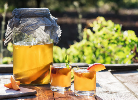 Do Cannabis & Kombucha Tea Marry Well Together?