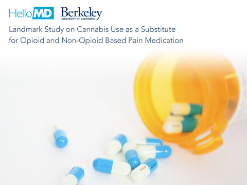 HelloMD and UC Berkeley Release Study on Cannabis Use as a Substitute for Opioid and Non-Opioid Based Pain Medication