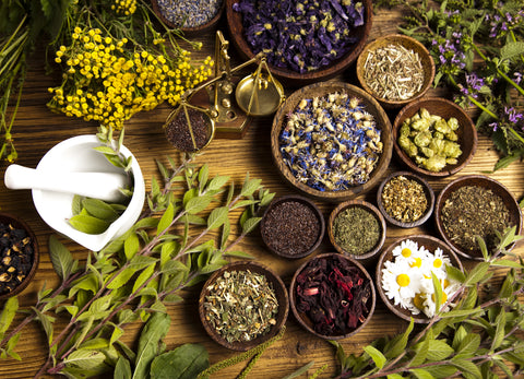 4 Herbs That Can Enhance Cannabis's Effects