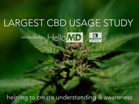 Largest CBD Usage Study Published by HelloMD with Brightfield Group