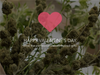Happy Valentine's Day: The Perfect Cannabis Inspired Gifts