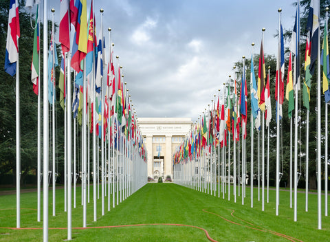 World Health Organization Opens the Door to Cannabis Law Reforms