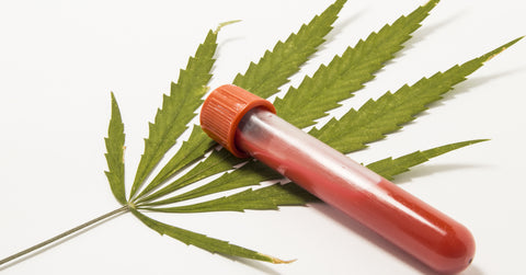 Can marijuana act as a blood thinner?