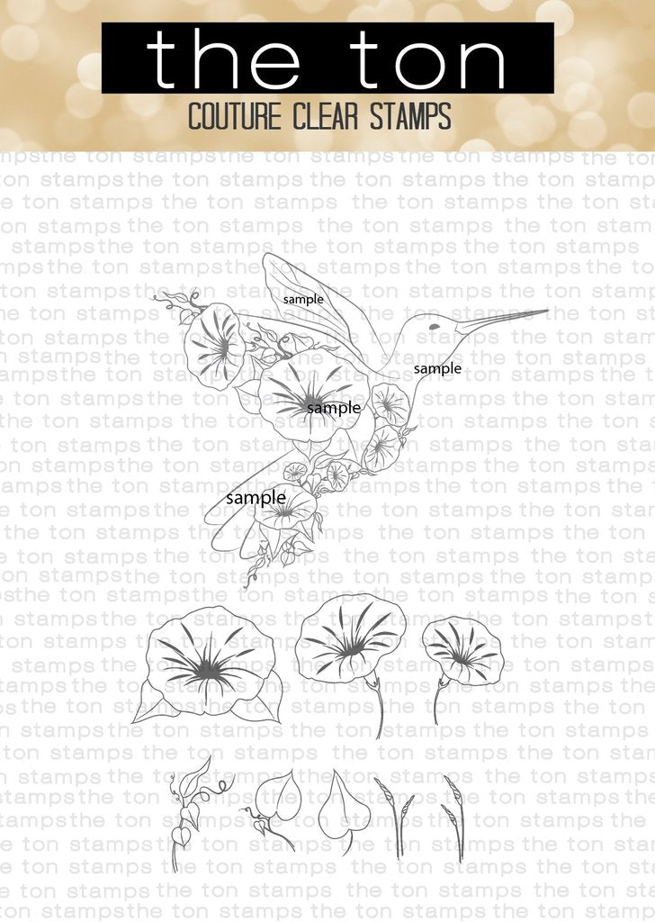 Transformation Hummingbird - The Ton Clear Stamps