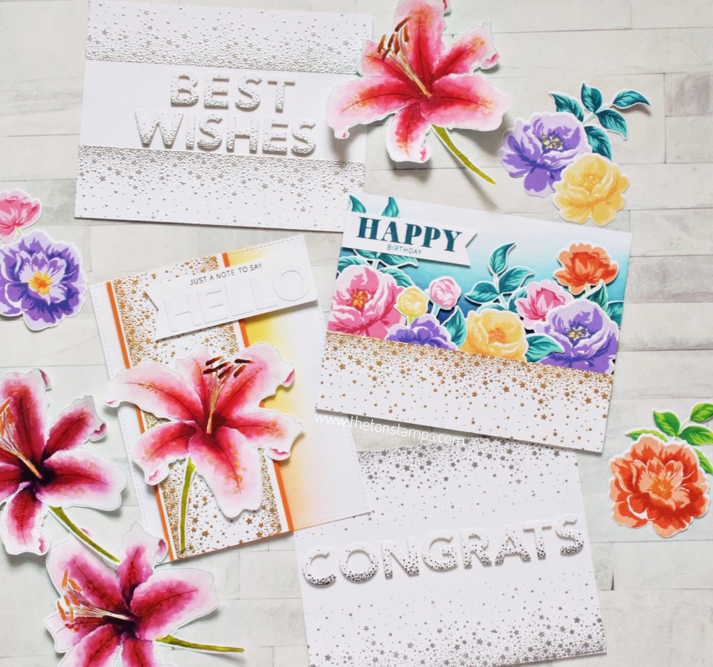 Confetti Borders - The Ton Clear Stamps