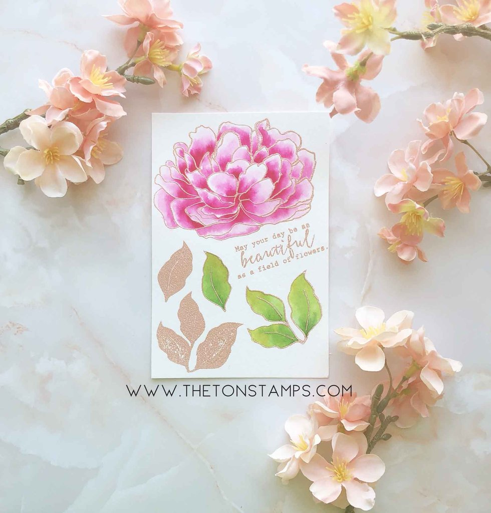 Large Peony 4 - The Ton Clear Stamps