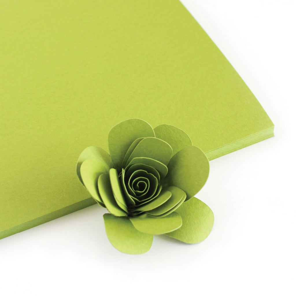 Leafy Color Crush Cardstock - The Stamp Market