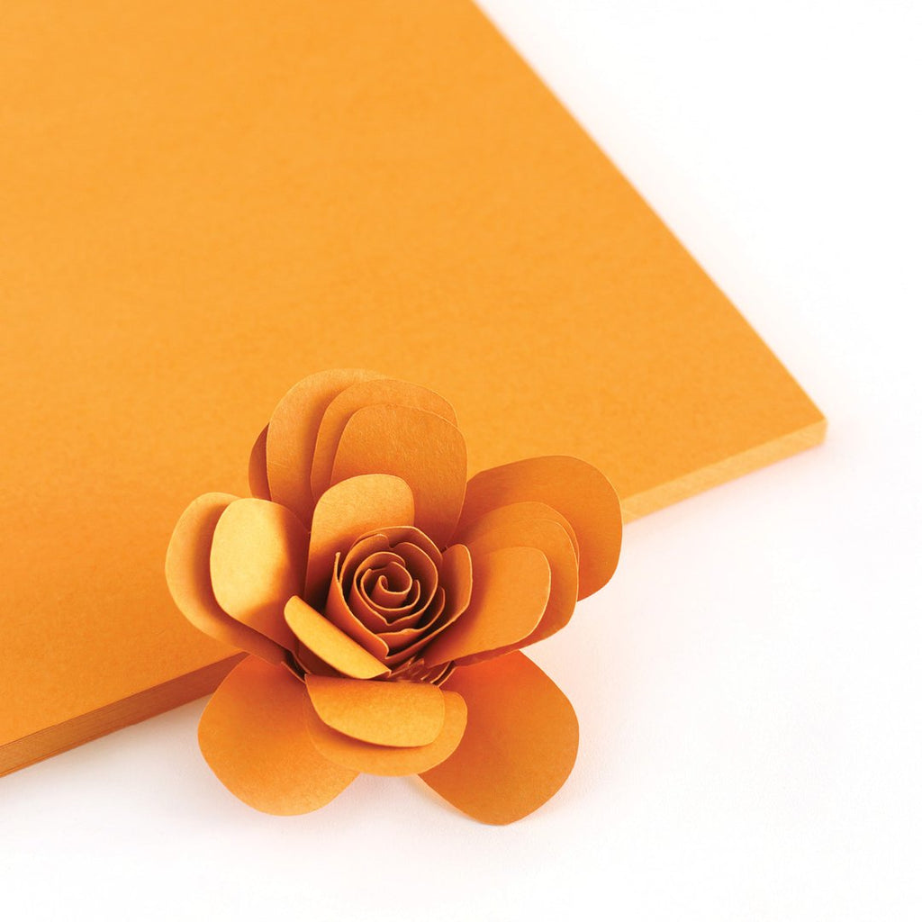 Melon Orange Color Crush Cardstock - The Stamp Market