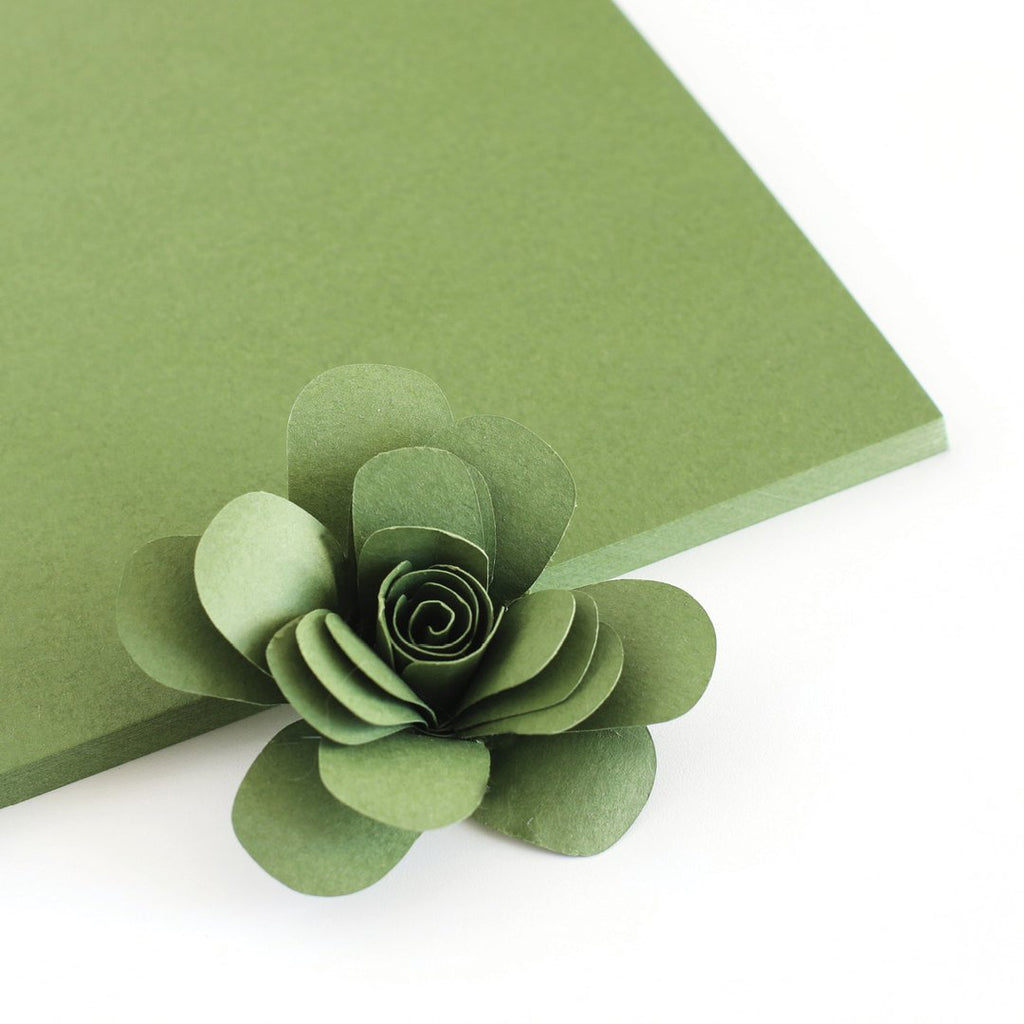 Mossy Color Crush Cardstock - The Stamp Market