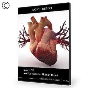 DOSCH 3D: Medical Details - Human Heart-Dosch Design-NOVEDGE