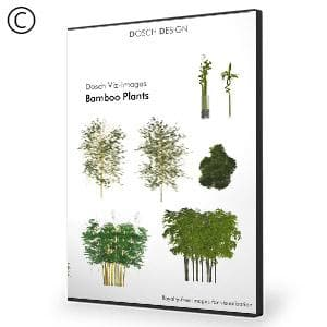 DOSCH 2D Viz-Images: Bamboo Plants-Dosch Design-NOVEDGE