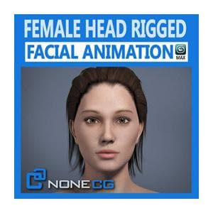 Characters - Adult Female Head Rigged-NoneCG-NOVEDGE