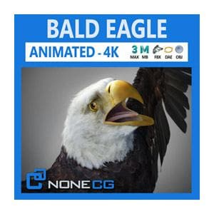 Birds - Animated Bald And Golden Eagle - NOVEDGE