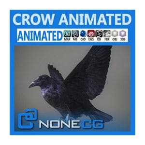Birds - Animated Crow-NoneCG-NOVEDGE