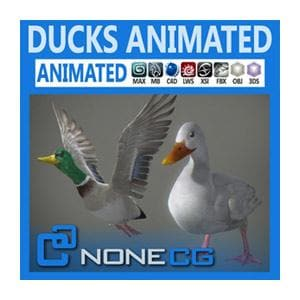 Birds - Animated Ducks-NoneCG-NOVEDGE