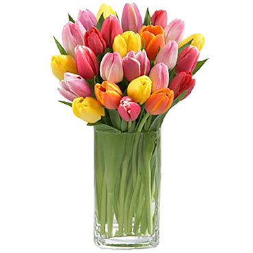 Multi-Color Tulips Arranged in a Vase