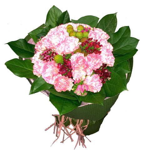 Mother's Day Special - Pink Carnations Flower Bouquet with Matching Greens