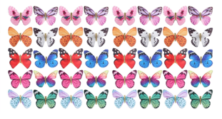 Assorted Butterflies