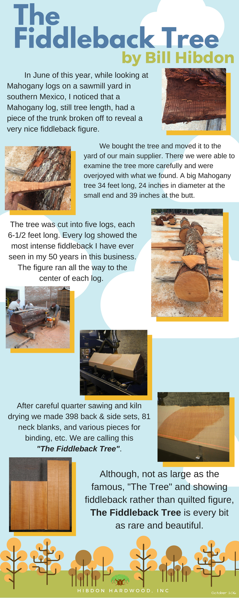 "In June of this year, while looking at Mahogany logs on a sawmill yard in southern Mexico, I noticed that a Mahogany log, still tree length, had a piece of the trunk broken off to reveal a very nice fiddleback figure. We bought the tree and moved it to the yard of our main supplier. There we were able to examine the tree more carefully and were overjoyed with what we found. A big Mahogany tree 34 feet long, 24 inches in diameter at the small end and 39 inches at the butt. The tree was cut into five logs, each 6-1/2 feet long. Every log showed the most intense fiddleback I have ever seen in my 50 years in this business. The figure ran all the way to the center of each log. After careful quarter sawing and kiln drying we made 398 back & side sets, 81 neck blanks, and various pieces for binding, etc. We are calling this  ""The Fiddleback Tree"". Although, not as large as the famous, ""The Tree"" and showing fiddleback rather than quilted figure, The Fiddleback Tree is every bit as rare and beautiful."