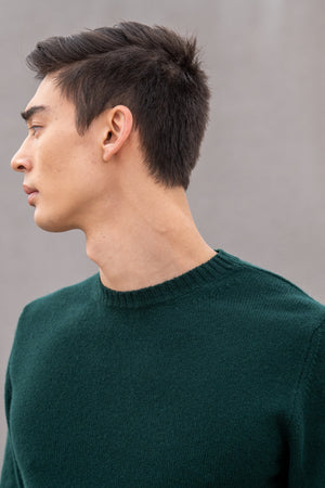 Load image into Gallery viewer, Virgin Wool Pullover By Daniele Fiesoli