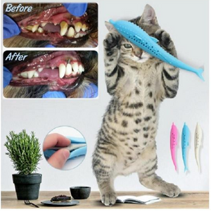 Soft Silicone Mint Fish Cat Toy Catnip Pet - Engineracing