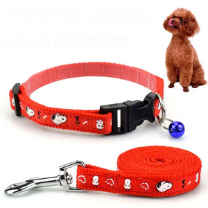Adjustable Collar Leash Set