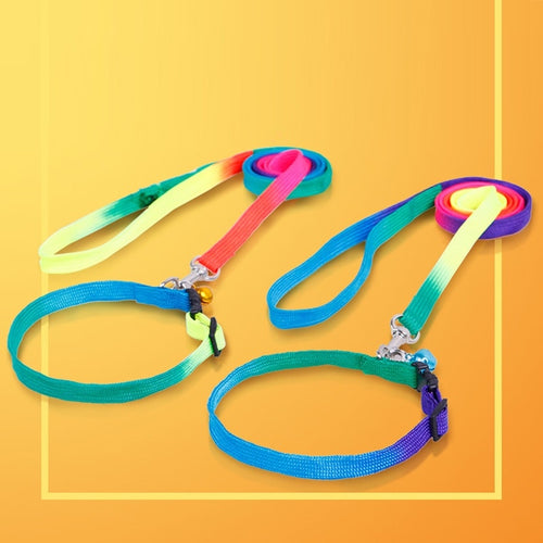 Adjustable Rainbow Dog Collar and Leash Set