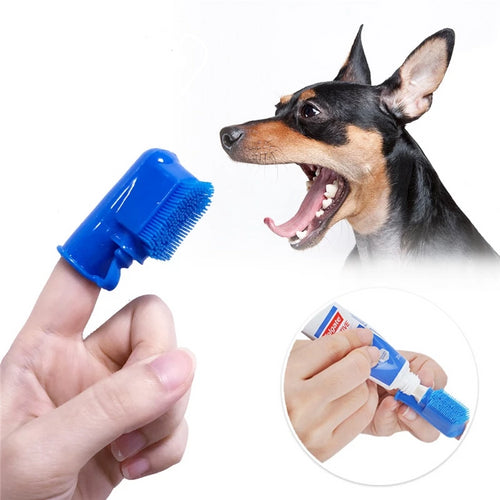 Spill-proof Pet Toothbrush & Paste