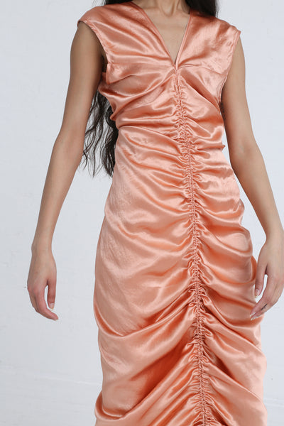 Shaina Mote Neeja Dress in Peony on model view front detail