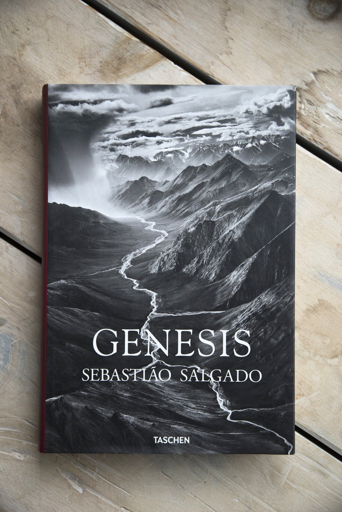 Genesis | Oroboro Store | Brooklyn, New York