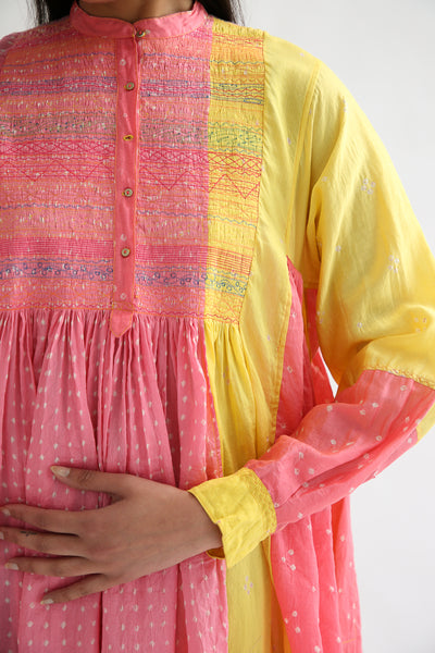 Injiri Dress - Cotton/Silk in Pink Multi left sleeve and bodice embroidery detail