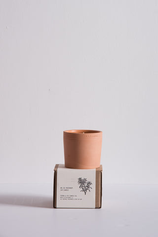 P.F. Candle Terra Soy Candle in No. 5 Rosemary | Oroboro Store | New York, NY