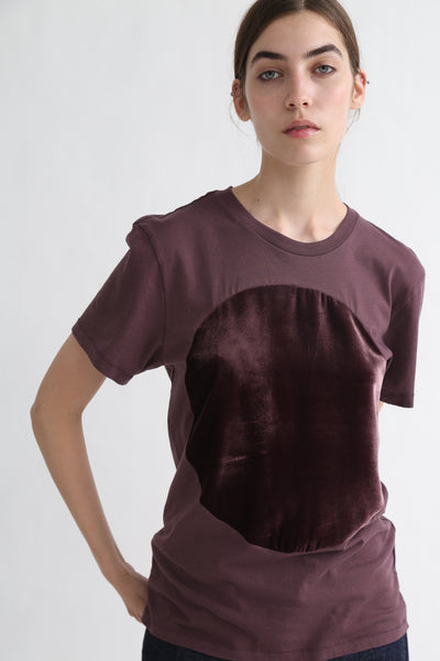 Correll Correll Velvet T-Shirt in Brown on model view front