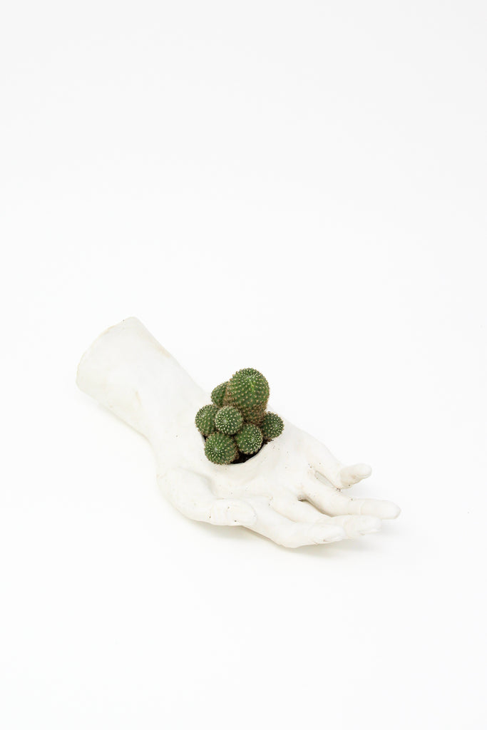Monty J Ceramic Hand Sculpture - Flat Hand - Cactus in Palm | Oroboro Store | New York, NY