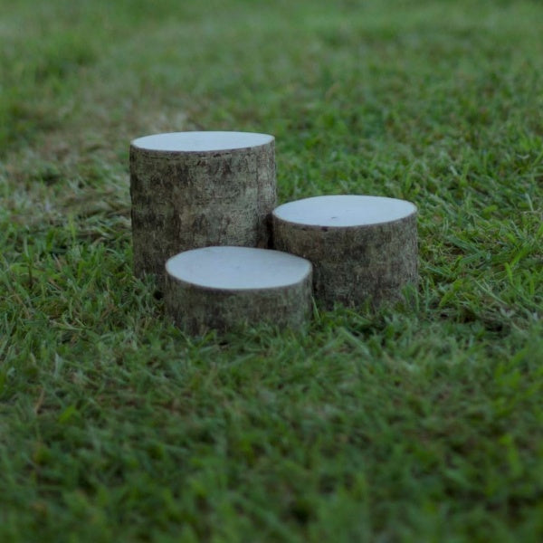 Set of 3 Mini Wood Stumps