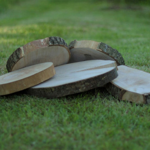 Clearance Wood Slice 25-30cm